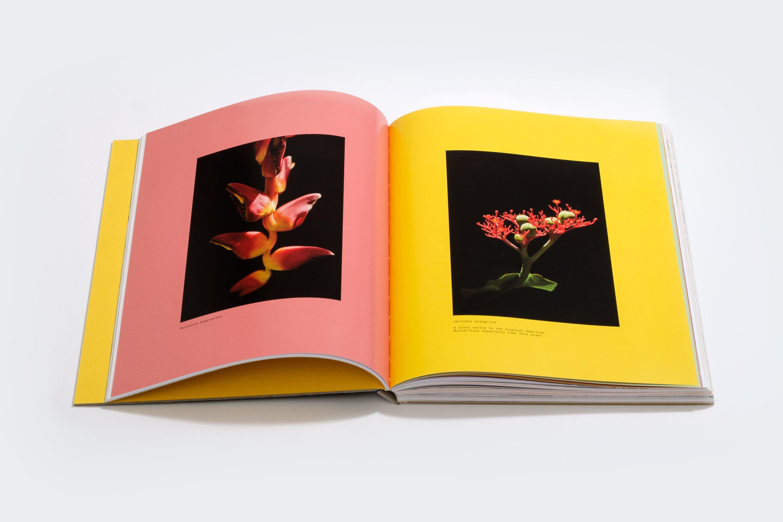 Place Press Rbm Book 7